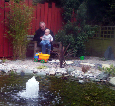 pond food chain for kids. Children and Ponds